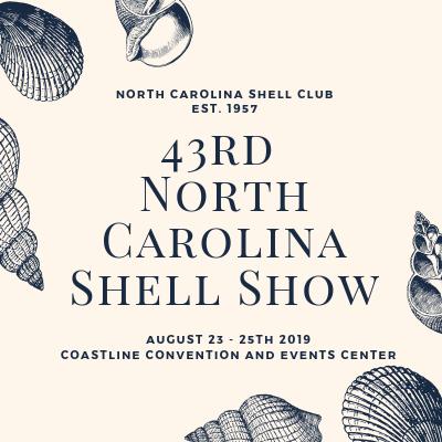 43rd North Carolina Shell Show
